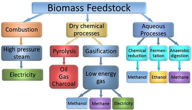 flow chart for bioenergy processes