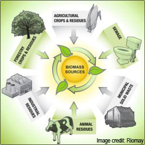 biocycle chart