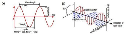 electromagnetic wave in two dimensions