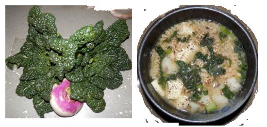 yukina savoy noodle soup