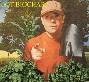 got biochar?